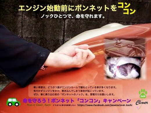 命を守ろう!ボンネット『コンコン』キャンペーン