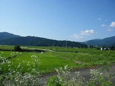 奥越田園1