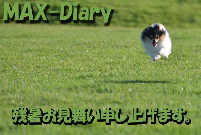 2012残暑見舞い_MAXパパ&ママさん