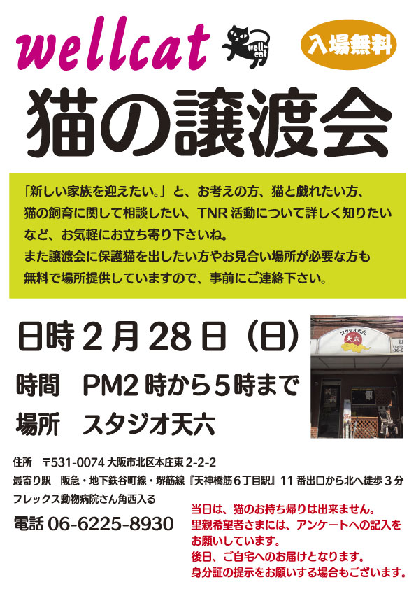 譲渡会2-29.jpg