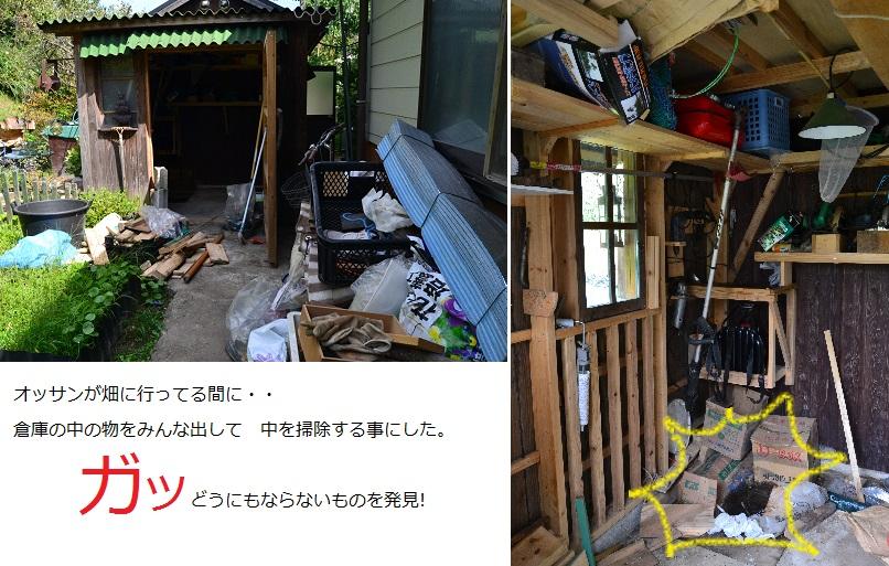 DSC_0618_1.JPG