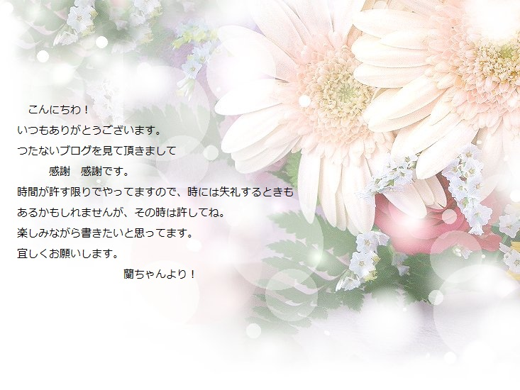 bk-hntb1.jpg