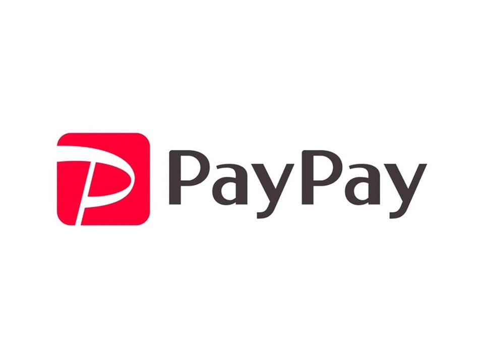 PAYPAY カード 決済 会計 支払い ローン VISA ペイペイ