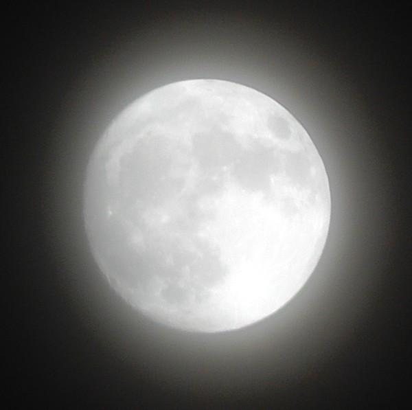 2016年11月13日の横浜の月
