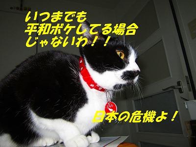 日本の危機よ!.jpg