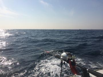 160228沖の瀬2