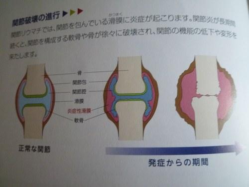 4シンポニーパンフ2500.jpg