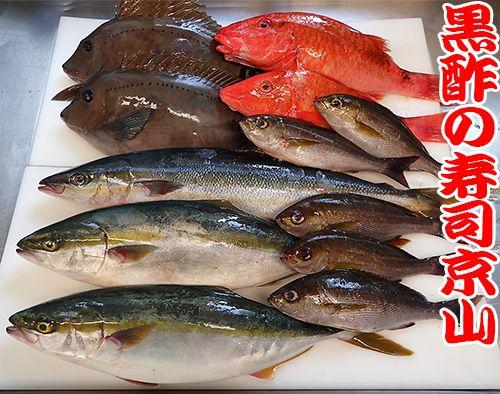 江戸川区清新町に美味しいお寿司を宅配します!
