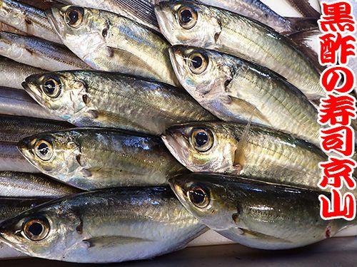 江戸川区瑞江まで新鮮美味しいお寿司をお届けします