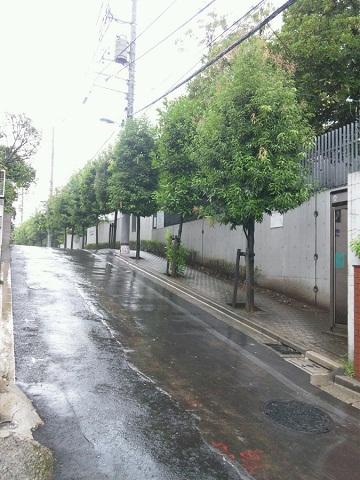 20120923用東洋大学へ続く坂道.JPG
