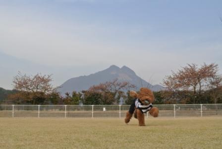 到着後のラン (17).JPG