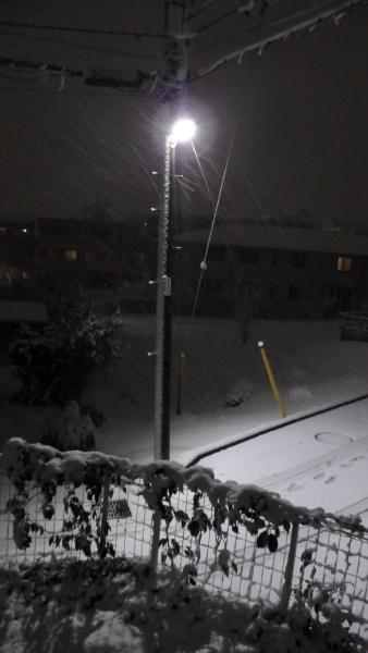 電柱 着雪 積雪