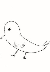2017鳥 しま2-1 (3)_LI.jpg