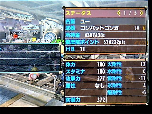 P4063902.JPG