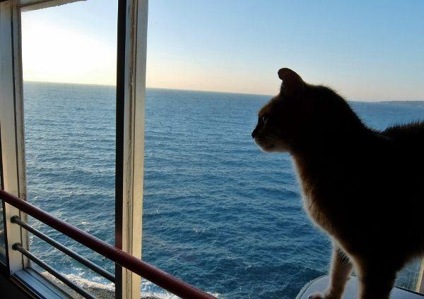 地中海 七つの海 英語