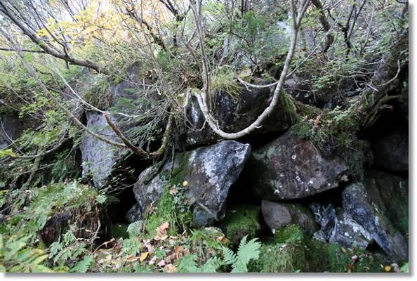 栂池自然園-60 風穴-2 15.10.2