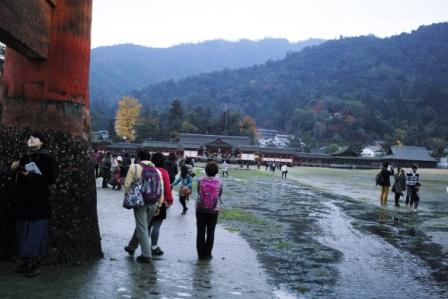 鳥居から厳島神社を眺める.JPG