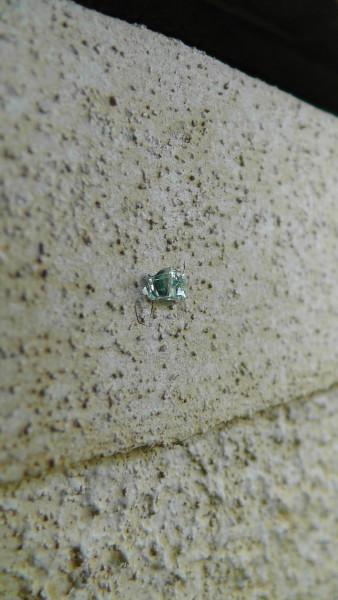 壁にめり込んだフロントガラスの破片