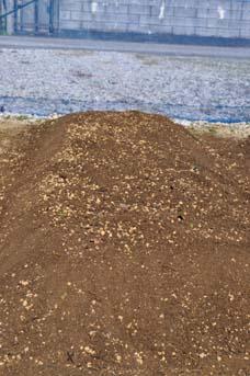 ジャガイモの畝