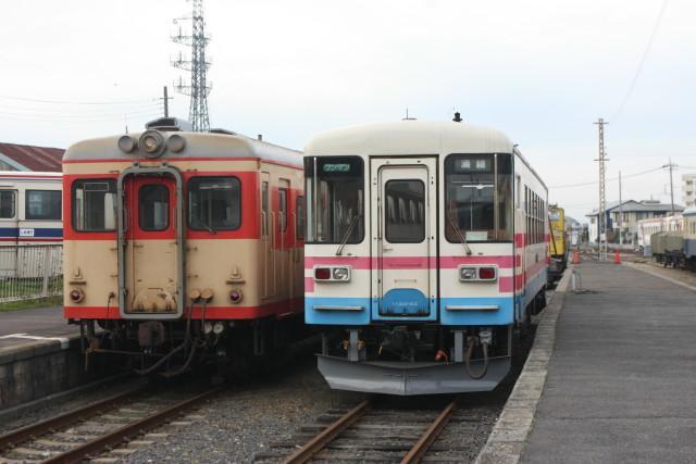 ひたちなか海浜鉄道  「駅猫おさむ 」2