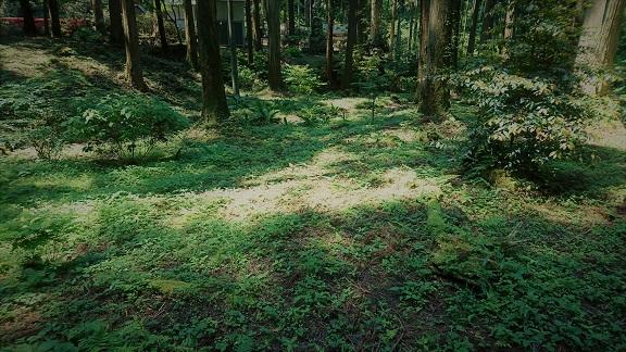 17-06-10 御岩神社3