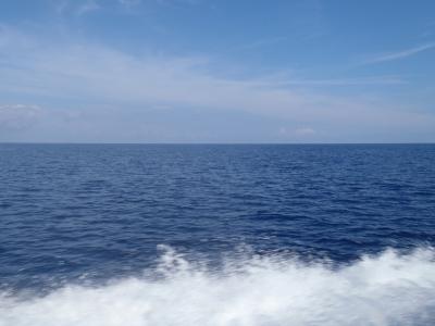 沖縄深海魚採集2013年7月下旬1