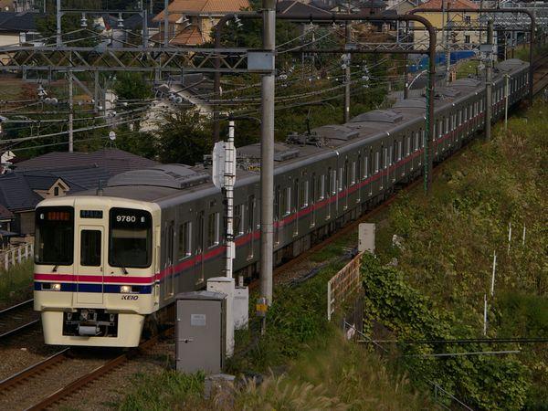 IMGP8732.JPG
