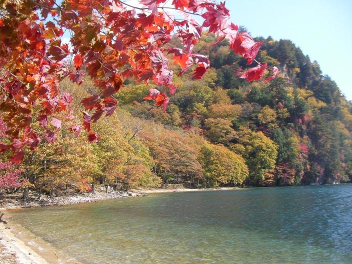 2012-10-21 20121021 053b.jpg