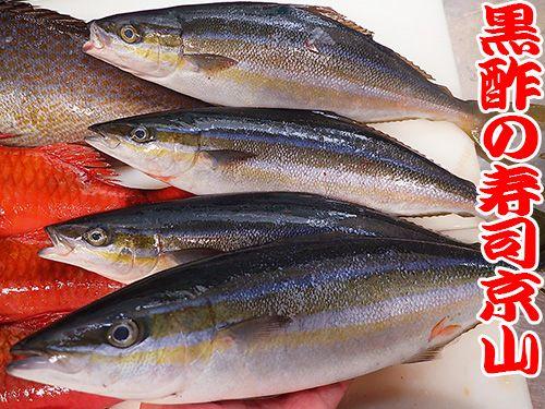港区 東新橋 美味しい魚 宅配寿司