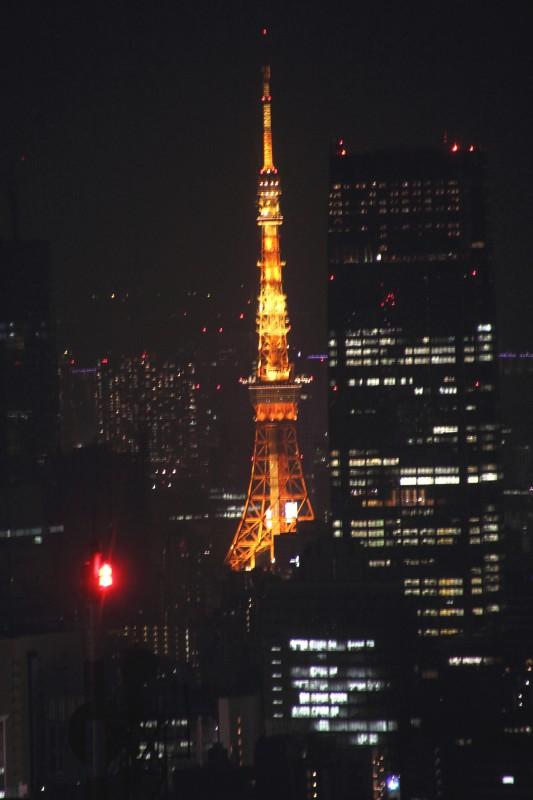 東京都夜景_004.jpg