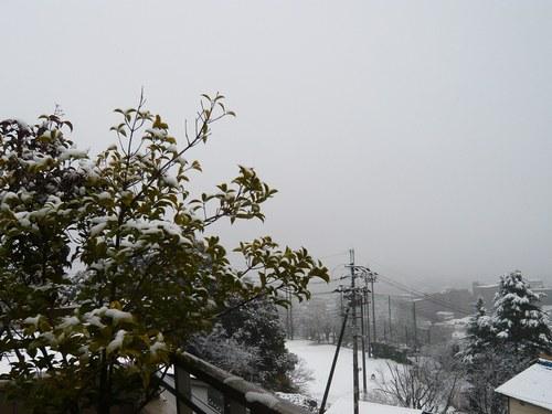 1雪景色5002.jpg