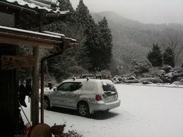 WARABI雪.JPG