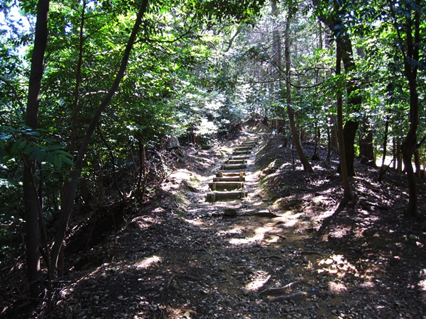 11ハイキングコース登り路.JPG