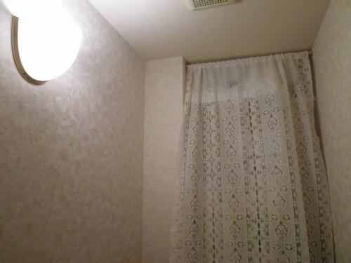 5カーテン洗い トイレ500.jpg