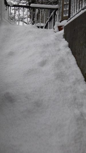階段滑り台.JPG