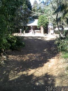鷲神社 1