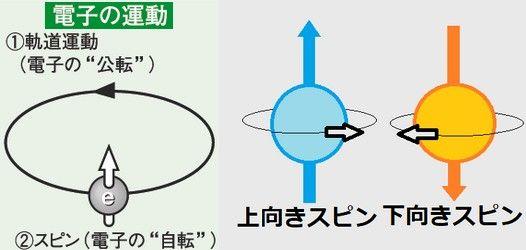 https://image.space.rakuten.co.jp/d/strg/ctrl/9/44f8fefd515448440270a700a788fb37c69d25f9.64.2.9.2.jpeg