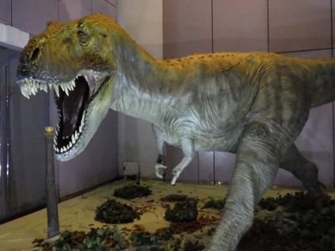 メガ恐竜展2017巨大化の謎にせまる4 ティラノサウルスの生体復元模型