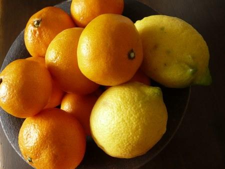 4みかん&レモン 4500.jpg