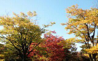 rblog-20141020011711-01.jpg