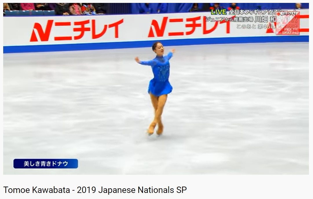 全日本 フィギュア スケート 選手権 2019 チケット