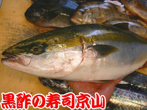 葛飾区 寿司 出前 青戸.jpg