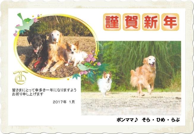 2017-0108-01 ブログ用-1.jpg
