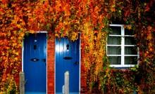 青いドア2つ