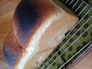 初めてのパン