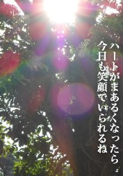 光のギフト.jpeg