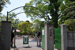 fuji2013_a.JPG