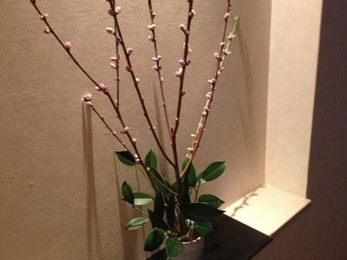 2玄関 桃の花 黒2500.jpg