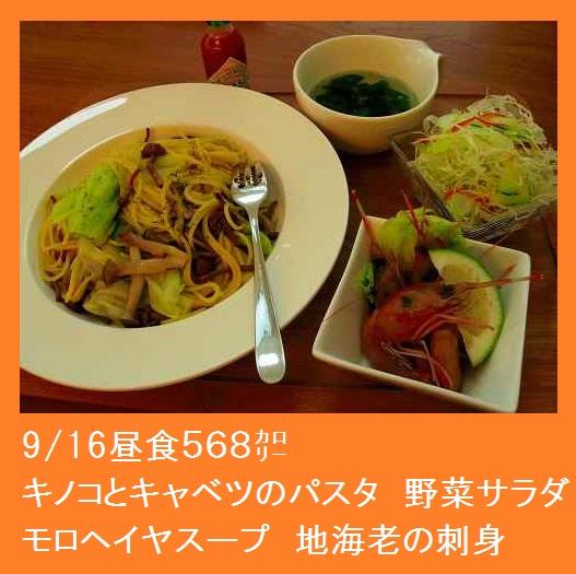 2015_0916_123132-IMGP4874.JPG