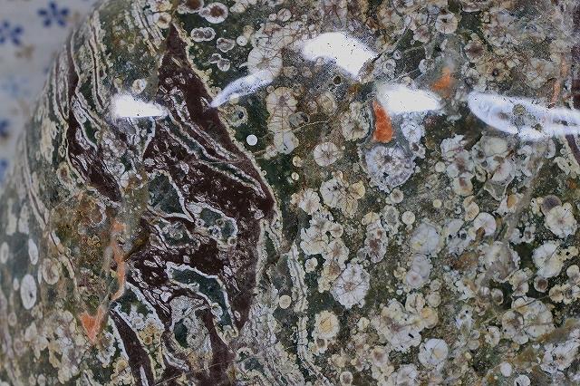 富山県 臼中紋石